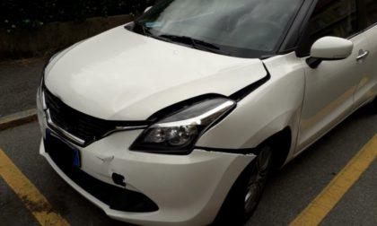 """Automobilista pavese investe un capriolo in A1 e denuncia: """"recinzioni di 1,20 metri non bastano"""""""