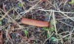 Wurstel pieni di chiodi: trovate esche killer a San Cipriano Po FOTO