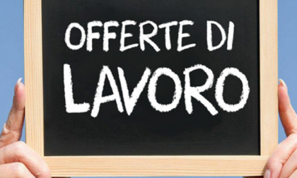 Tigros assume: posizioni aperte a Milano, Pieve, Cusago e Assago