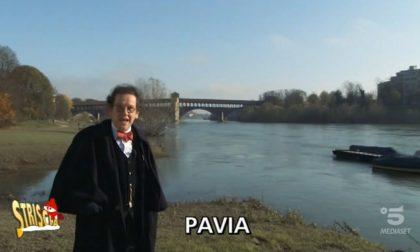 Addio a Philippe Daverio: quella volta in cui svelò la leggenda del Ponte Coperto VIDEO