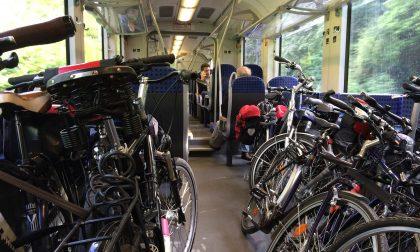 Riders indisciplinati sulla Milano-Mortara: dura reazione da Regione Lombardia
