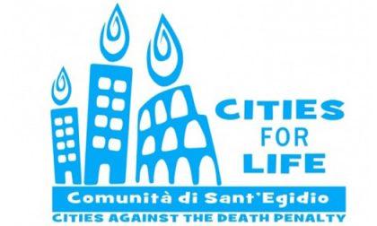 """Pavia conferma l'adesione alla campagna """"Cities for life"""": per un mondo senza pena di morte"""