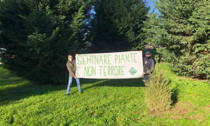 """Foresta Che Avanza celebra l'annuale Festa dell'Albero nonostante il Covid: """"Seminiamo piante non terrore"""""""