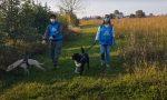 Covid e animali: 200 cuccioli presi in carico dai volontari dei padroni malati STORIE DI SOLIDARIETA' – VIDEO