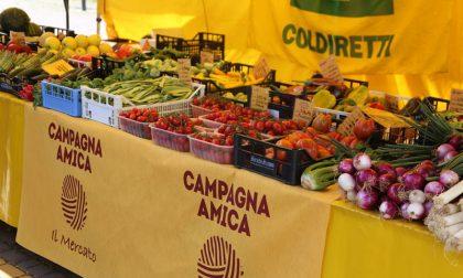"""Covid, a Pavia torna la """"spesa sospesa"""" di Coldiretti per aiutare chi ne ha più bisogno"""