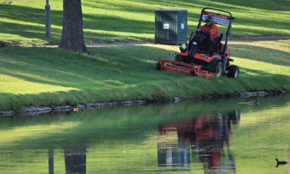 Ad ASM Pavia la gestione della manutenzione del verde pubblico