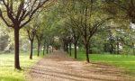 Verde curato e nuove attrezzature,al via la riqualificazione del Parco della Vernavola