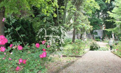 Aria di ripartenza, riapre al pubblico anche l'Orto botanico di Pavia