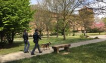 Spaccia nel fossato del Castello Visconteo, denunciato