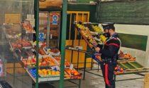 Sfonda la vetrina del negozio di frutta e verdura e tenta di rubare generi alimentari