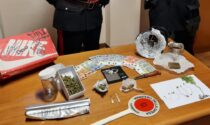 Hashish, marijuana e sette piantine di canapa indiana: denunciato 21enne