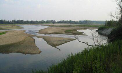 Volontari Plastic Free puliranno il fiume Po dai rifiuti, anche in provincia di Pavia