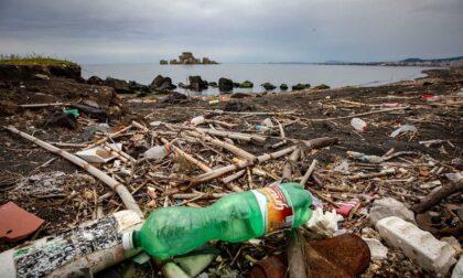 #unPOprimadelmare: per ripulire dalla plastica le rive del Ticino, si cercano volontari