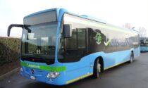 A Pavia, Vigevano e Voghera i centri vaccinali si raggiungono anche in autobus
