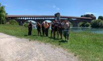 Oltre 200 pellegrini in un mese: la Via Francisca del Lucomagno riparte