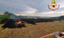 Incendi di sterpaglie in campagna: i Vigili del Fuoco in azione