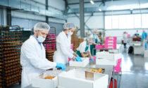 Confindustria propone la sospensione dal lavoro per chi non ha il Green pass