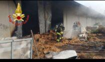 Incendio nel canile di San Genesio: distrutto un capannone
