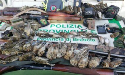 Da Brescia a Pavia per abbattere fauna protetta, cacciatori denunciati