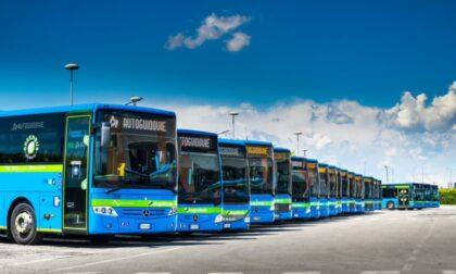 Green pass obbligatorio: possibili disagi sulle corse degli autobus, anche a Pavia